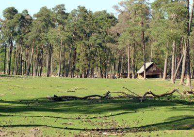 naturwildpark014-min