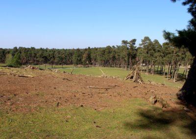 naturwildpark021-min
